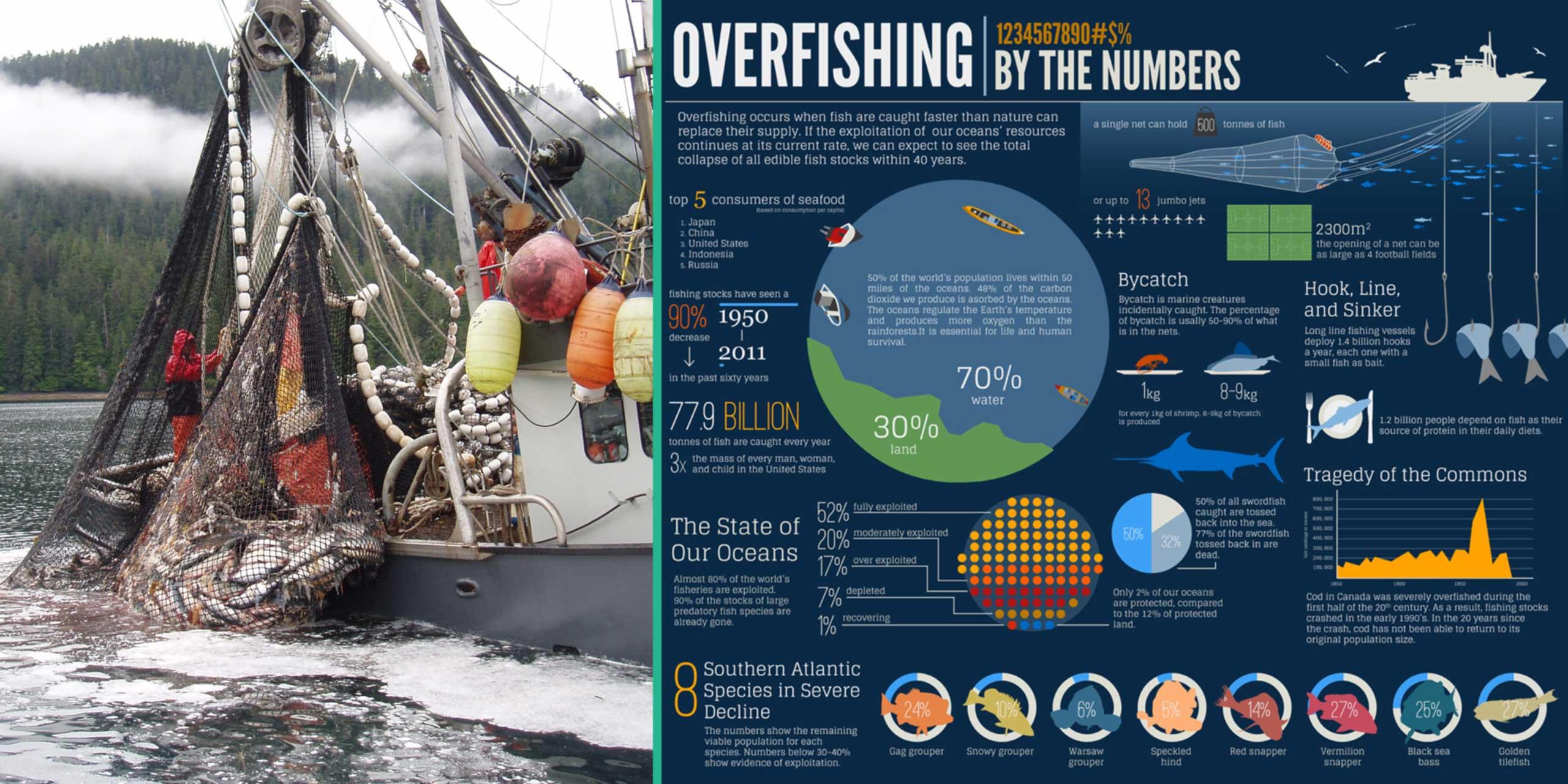 http://skollworldforumorg.c.presscdn.com/wp-content/uploads/2014/02/marine-stewardship-council-sl1.jpg