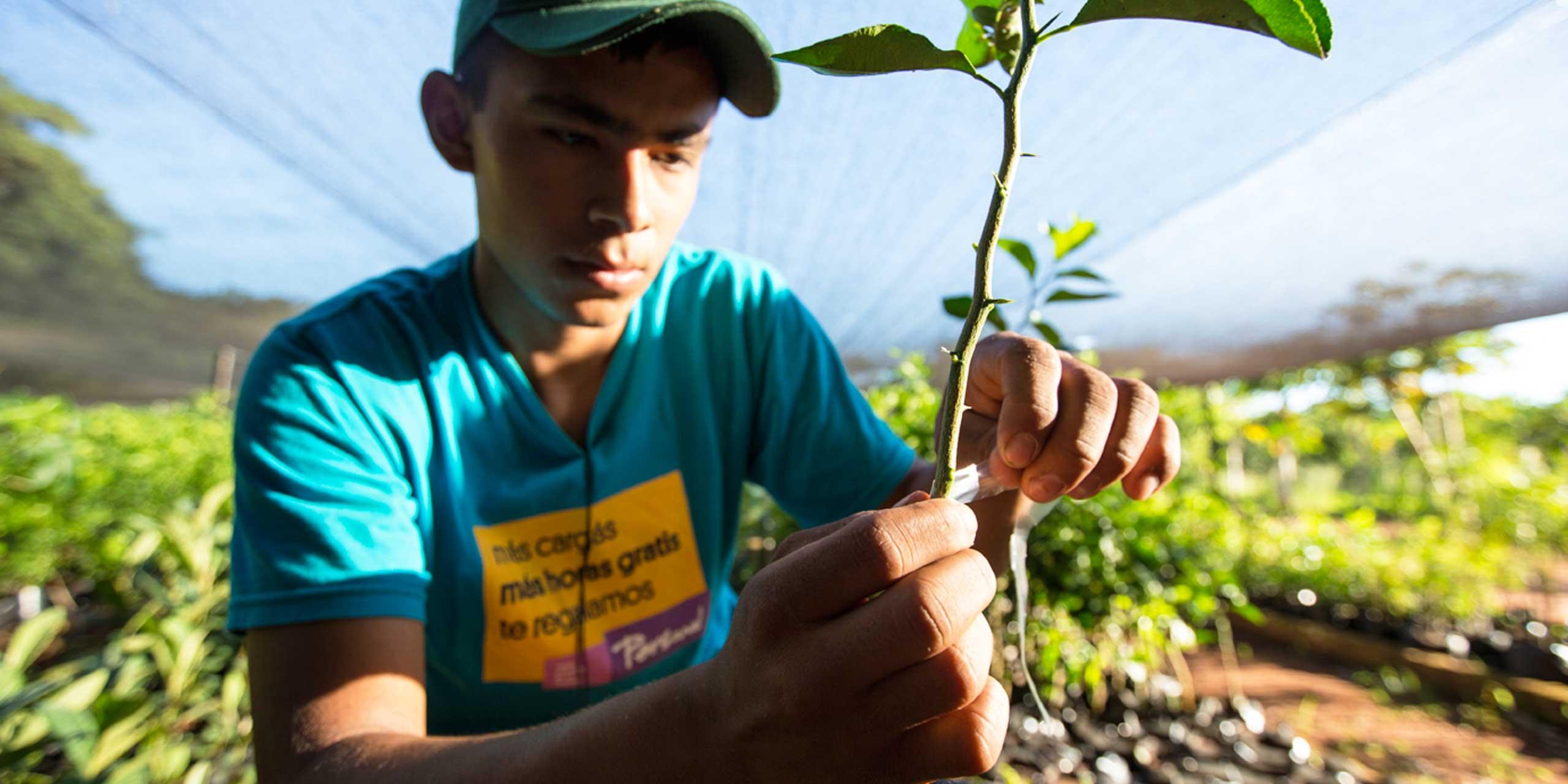 http://skollworldforumorg.c.presscdn.com/wp-content/uploads/2014/04/fundacion-paraguaya-sl4.jpg