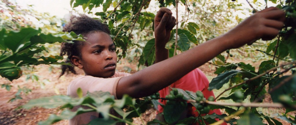 Ending Child Labor: The Dirty Business of Cleaning Up Supply Chains