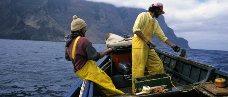 Marine Stewardship Council Labeling and the Future of Sustainable Fisheries