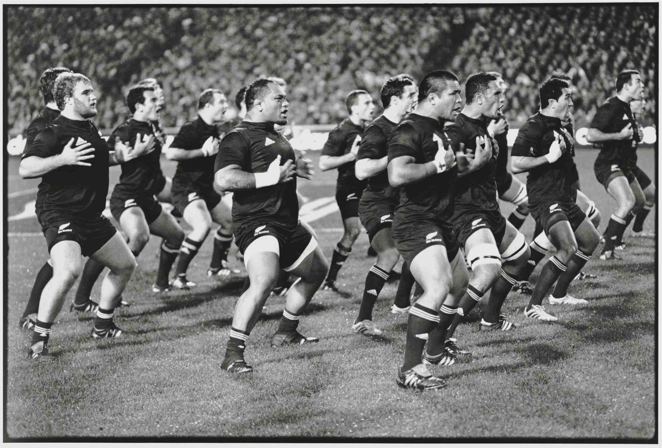 haka close up